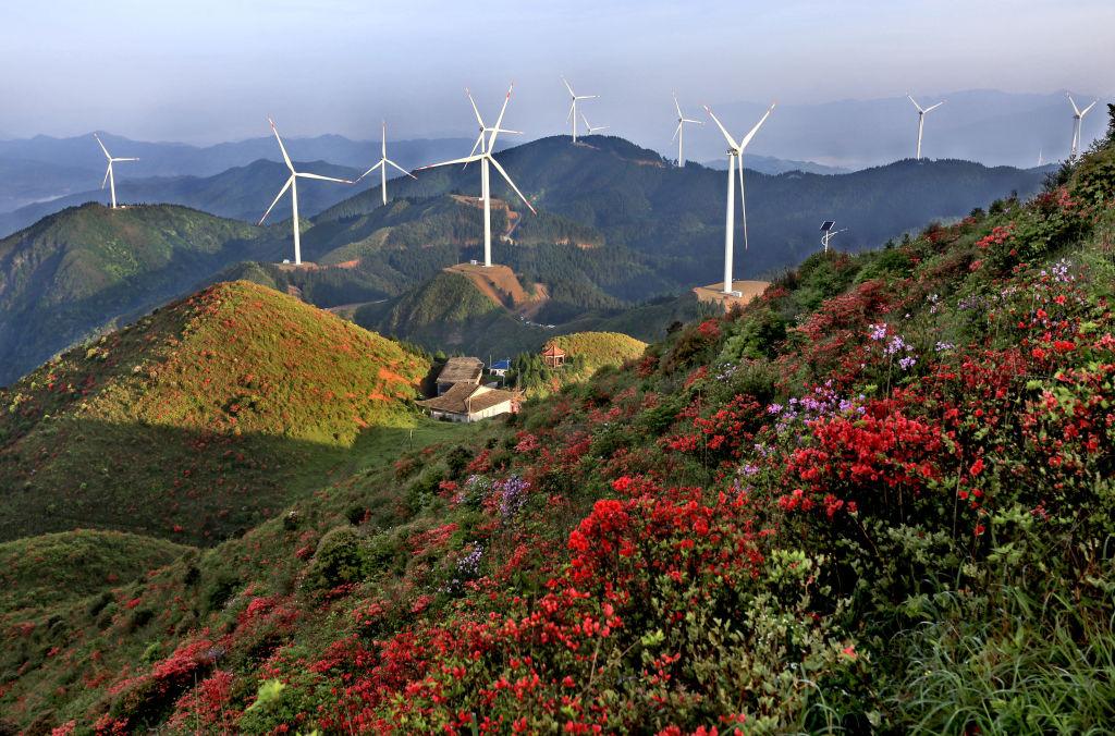 Rinnovabili, la via del futuro
