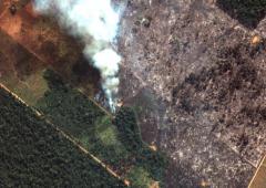 """Amazzonia, Macron: """"La nostra casa sta bruciando"""""""