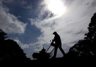 Ecosostenibilità: nei prossimi cinque anni aziende cercheranno oltre 600mila lavoratori