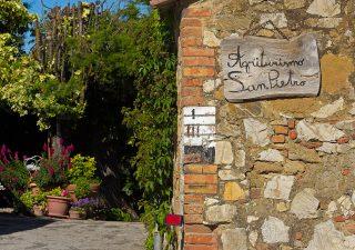 Toscana patria degli agriturismi, tra degustazione ed alloggio crescono i servizi