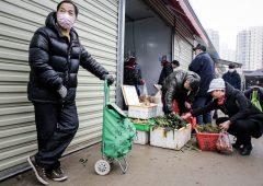 Borse, ripercussioni del virus cinese (coronavirus) sui mercati