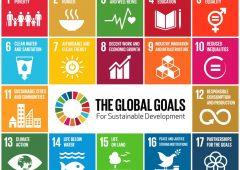 Gli obiettivi di sostenibilità delle Nazioni Unite