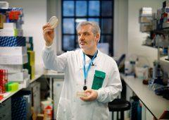 Coronavirus, nuova speranza dal farmaco per l'artrite
