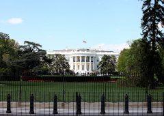 Elezioni americane: come funziona il voto