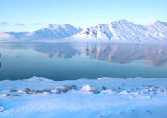 Nordea, la sostenibilità è nel Dna delle persone