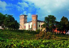 Castello di Buttrio. Fortezza tra le vigne