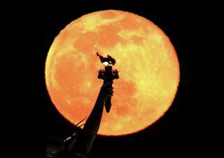 SpaceX: miliardario giapponese cerca 8 persone per andare sulla luna