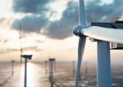 I quattro pilastri dell'approccio ESG di Invesco