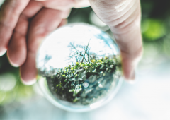 Green economy, perché sarà una rivoluzione per la finanza