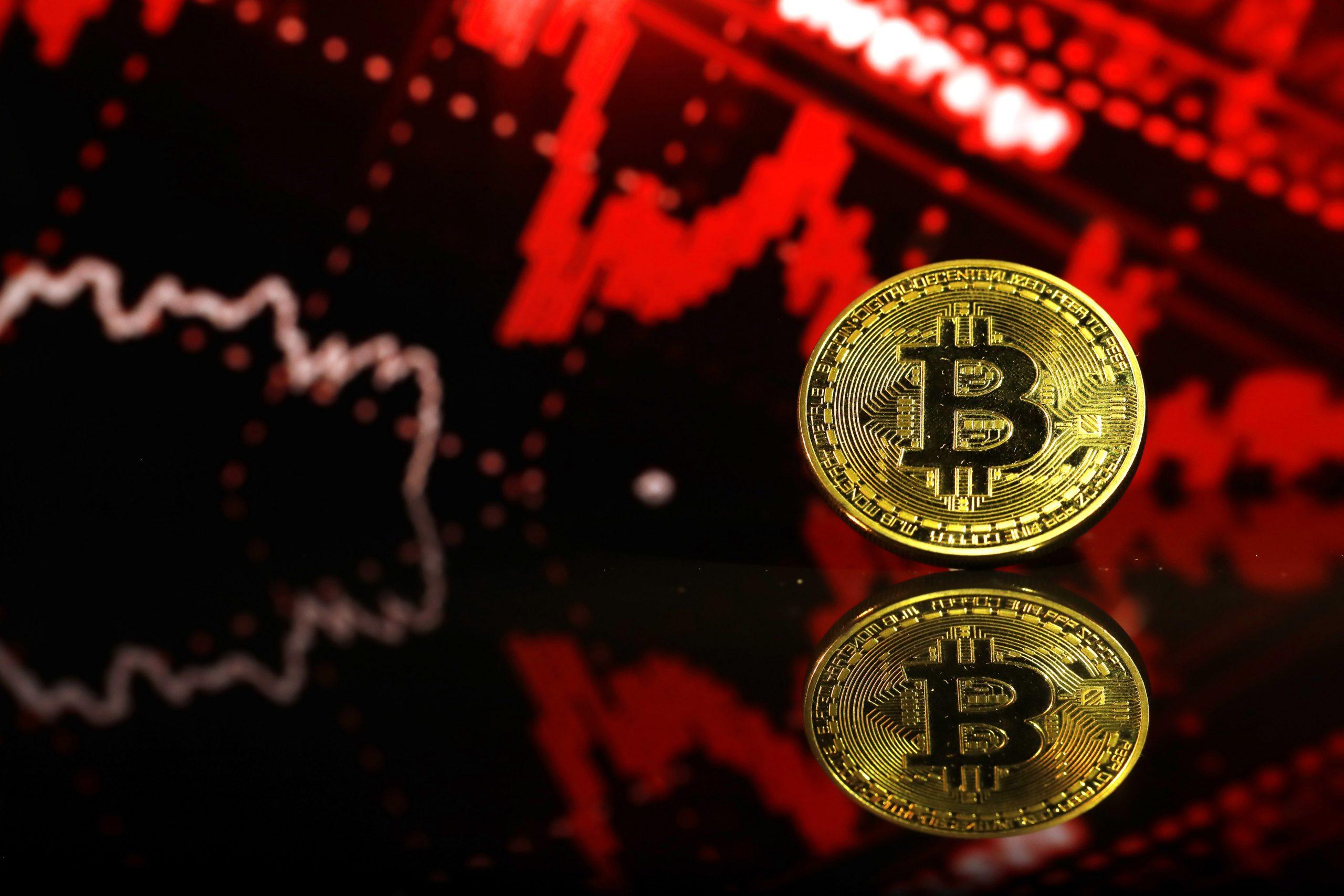 percento delle persone che commerciano criptovalute prospetto fiduciario investimenti bitcoin