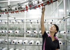 Cina: Pil mette il freno, dopo inizio d'anno boom